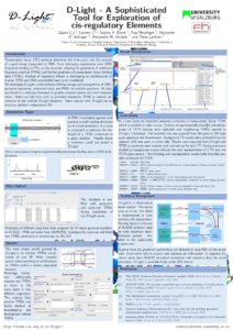 thumbnail of dlight_oegmbt_2011_poster